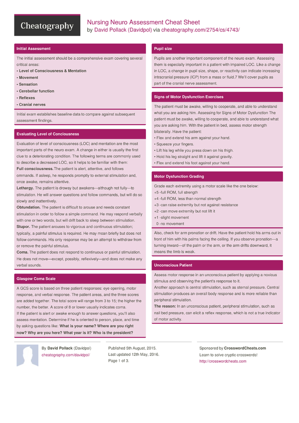 nurse assessment sheet