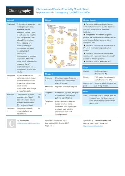 Chromosomal Basis of Heredity Cheat Sheet