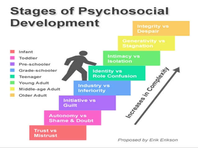 Ericksons developmental stage
