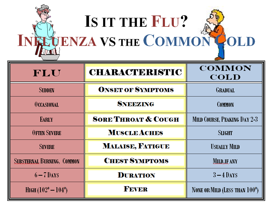 cold vs flu cheat sheet by davidpol download free from