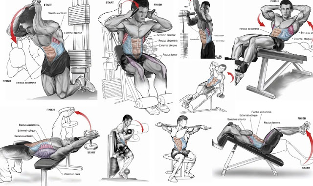 Easy Abs Workouts Cheat Sheet By Davidpol