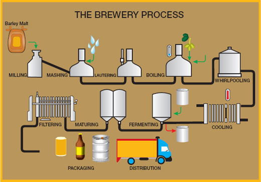 Formation of diacetyl in beer and action of R-acetolactate ...  |Beer Fermentation Process Diagram