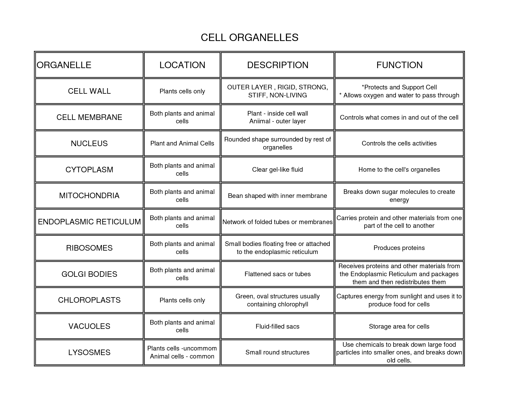 Biology 12 Final Exam Cheat Sheet by Eldiego650 Download free – Cells and Organelles Worksheet