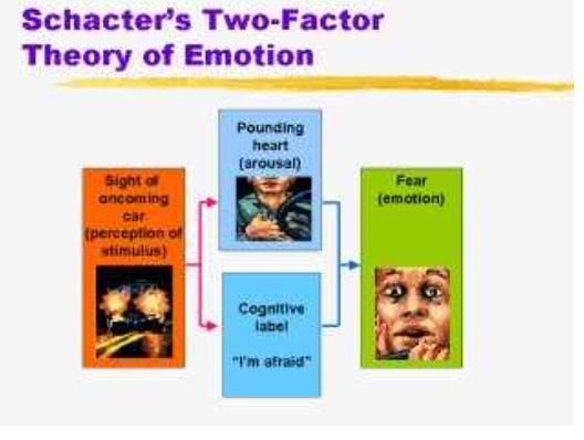 emotions emotion and schachter singer theory Like the james-lange theory of emotion, schachter and singer felt that physical arousal played a primary in emotions however, they suggested that this arousal was the same for a wide variety of emotions, so physical arousal alone could not be responsible for emotional responses.